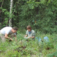Dan Mann and Elise Pendall examining a soil pit at Salcha Bluff near Fairbanks.
