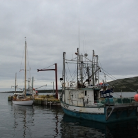 Fishing vessels in Makkovik harbor